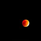 Eclipsed Moon, Boston, 2/20/2008 by Richard VanWart