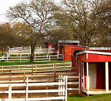 Beale Stables by flyfish70