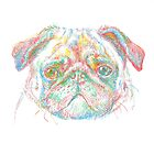 rainbow pug by v0ff