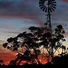 Aussie Icon by Kim Roper