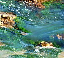 Emerald Pool - Caves Beach NSW Australia by Bev Woodman