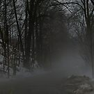 In a Fog or a bad Hangover... by Larry Llewellyn