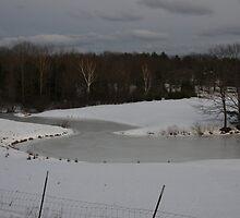 Frozen Peace by Judi FitzPatrick