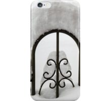 Snow Fence iPhone Case/Skin