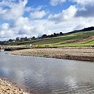River Char At Charmouth 2 by Susie Peek