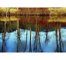 Mirror in the water Photographic Print