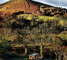 Little Hill by A90Six