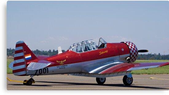 "North American AT-6 Harvard — SAAF 7001 — ""Inkwazi"" by RatManDude"