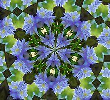 Nestled Clematis Kaleidoscope by SmilinEyes
