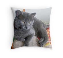 handsome fella Throw Pillow
