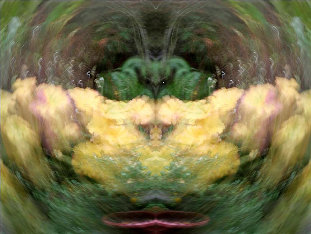 Wizzard by tgsdarkroom