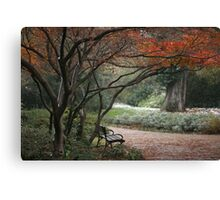 Touch of the Winter Canvas Print
