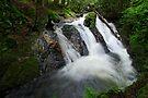 Foote Brook, Upper Falls, Summer by Stephen Beattie