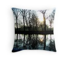 lacy reflections in noord holland Throw Pillow