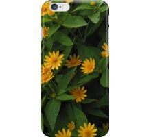 MetroParks Zoo 016 iPhone Case/Skin