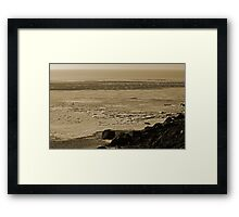 Winter With A Vengeance  Framed Print