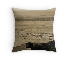 Winter With A Vengeance  Throw Pillow