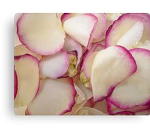 Rose Petals 6 Canvas Print