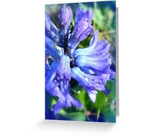 Spring Blues Greeting Card