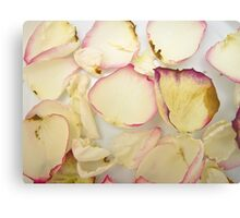 Rose Petals 9 Canvas Print
