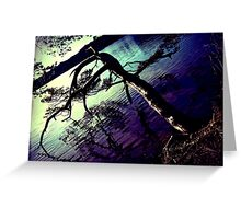 Touching the waters Greeting Card