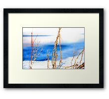 Skeleton Fingers Framed Print