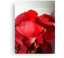 Red rose petals 3 Canvas Print
