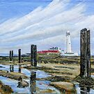 Rock Pools @ St Mary's light house  by Woodie
