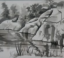 Quarry, Elephant Rocks State Park by KipDeVore