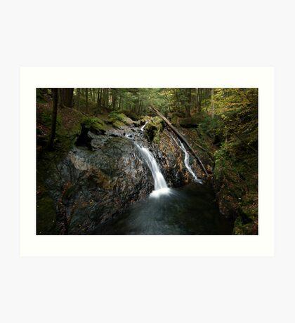 Foote Brook, Upper Falls, Autumn Art Print
