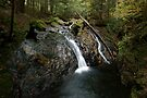Foote Brook, Upper Falls, Autumn by Stephen Beattie