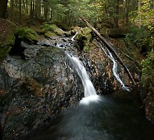 Foote Brook, Upper Falls, Autumn by Stephen Beattie