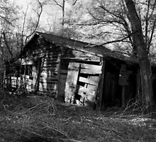 Old Barn at Poinsett State Park2 by AlixCollins