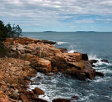 Near Ship Harbor, Acadia National Park, Maine by Stephen Beattie