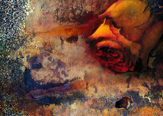 rusted rose by carol brandt