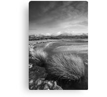 Grasses and Mountains Canvas Print