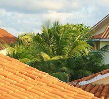 The Terra Cotta Tile Roofs by Carole Boudreau