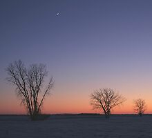 Prairie Winter Dusk! by Stephen Thomas