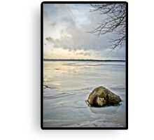 Freeze Canvas Print