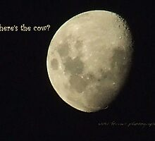 Moon Missing Cow © Vicki Ferrari Photography by Vicki Ferrari