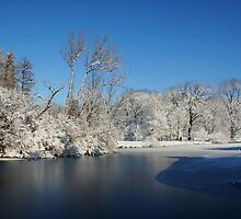 Winter Scene 2 by John Absher