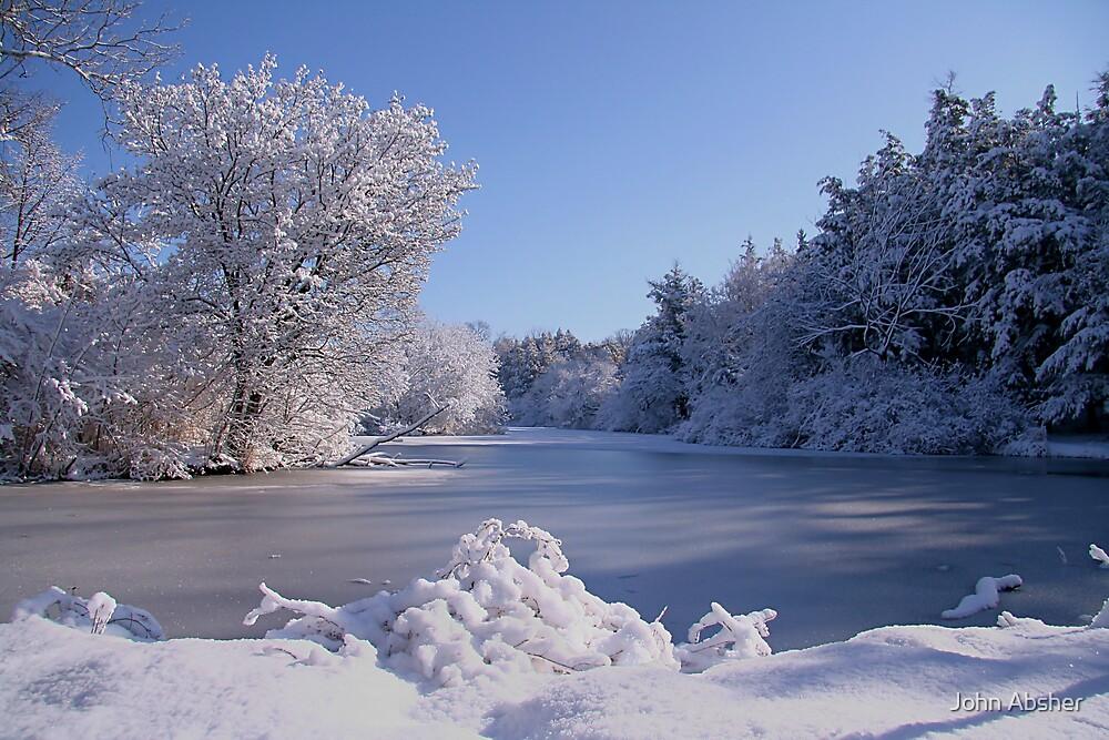 Winter Scene 3 by John Absher