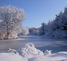Winter Scene 3 by John Absher