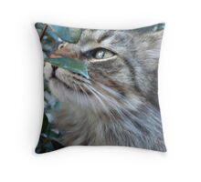 SOFT KITTY Throw Pillow