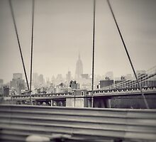 Staring at the Empire State Building by jaysanstudio