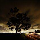 Night Driving  by locknut