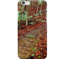 Kings Bluff Pedestal Rock, heart of the Ozarks. iPhone Case/Skin