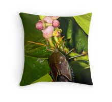 Shield Bug Throw Pillow