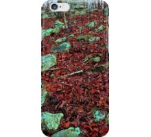 Emerald Native Path,  Kings Bluff Pedestal Rock, NW Arkansas. iPhone Case/Skin