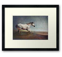 dust storm- white horse Framed Print